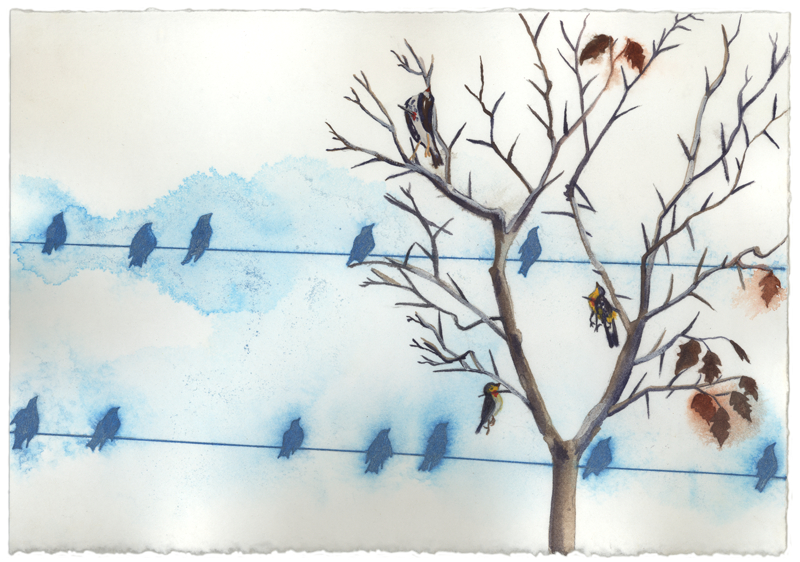 Large_fit_bird_tree