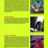 Thumb_small_page-8