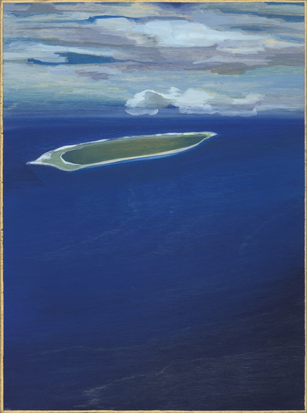 Large_fit_island_panel_1