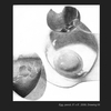 Thumb_small_falk_studentwork_eggs_web