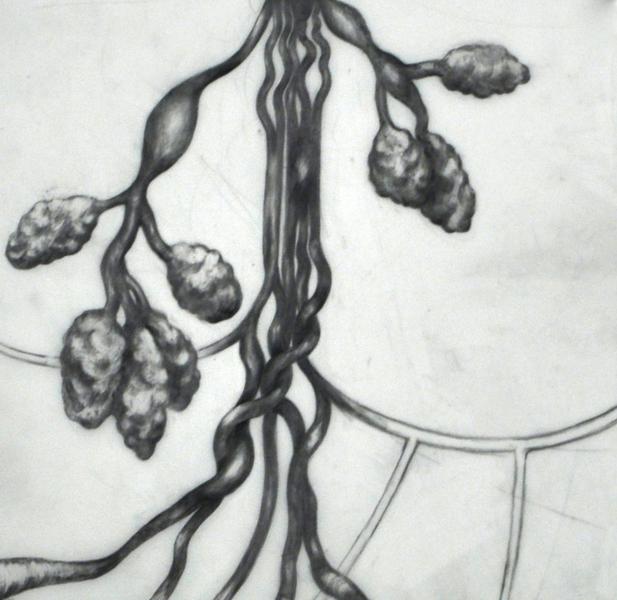 Large_fit_botanological_02