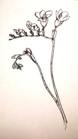Medium_fit_flower
