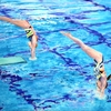 Thumb_small_synchro-entry-2